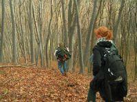 in Bilder von der Wanderung nach Moşna, Alma Vii und Biertan vom 17/18.11.2007